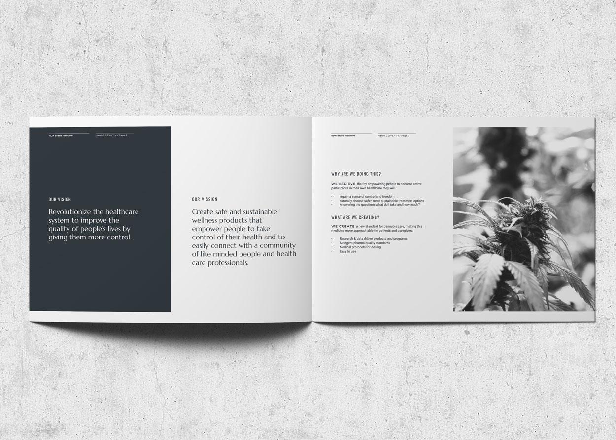 Gillian-Damborg-Pilot-Creative-Resolve-Digital-Health-branding-02